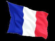 Master Franchise for France
